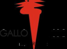 ristorante-gallo-rosso-intraweb-milano-cassa-fiscale-con-ipad